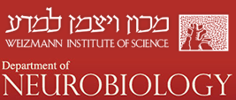 Dr. Philip Low speaks at The Weizmann Institute